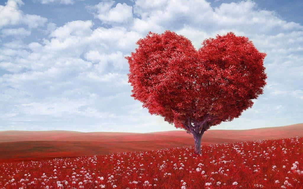 respiration, arbre, coeur, cohérence cardiaque, rouge
