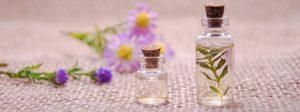 flacon, parfum naturel, fleur, écologie