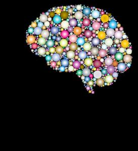 Micronutrition, neuromédiateurs, cerveau