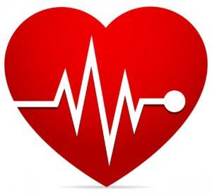Coeur, fréquence cardiaque, cohérence cardiaque
